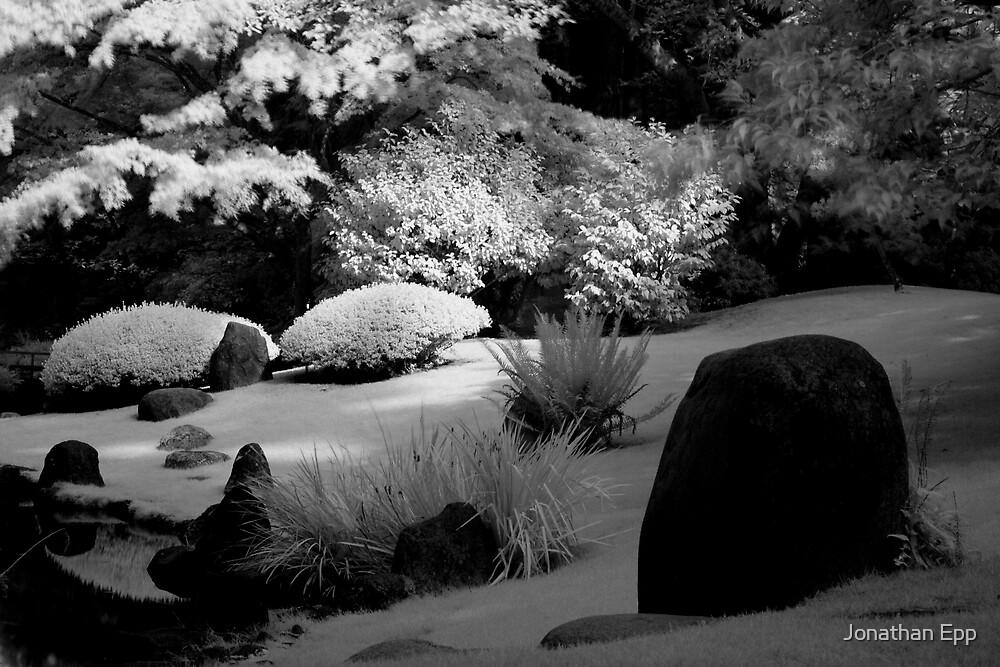Snowy Garden by Jonathan Epp