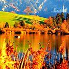 Neuschwanstein Castle in Autumn by ©The Creative  Minds