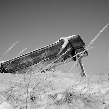 Bench in Disrepair by JonathanEpp
