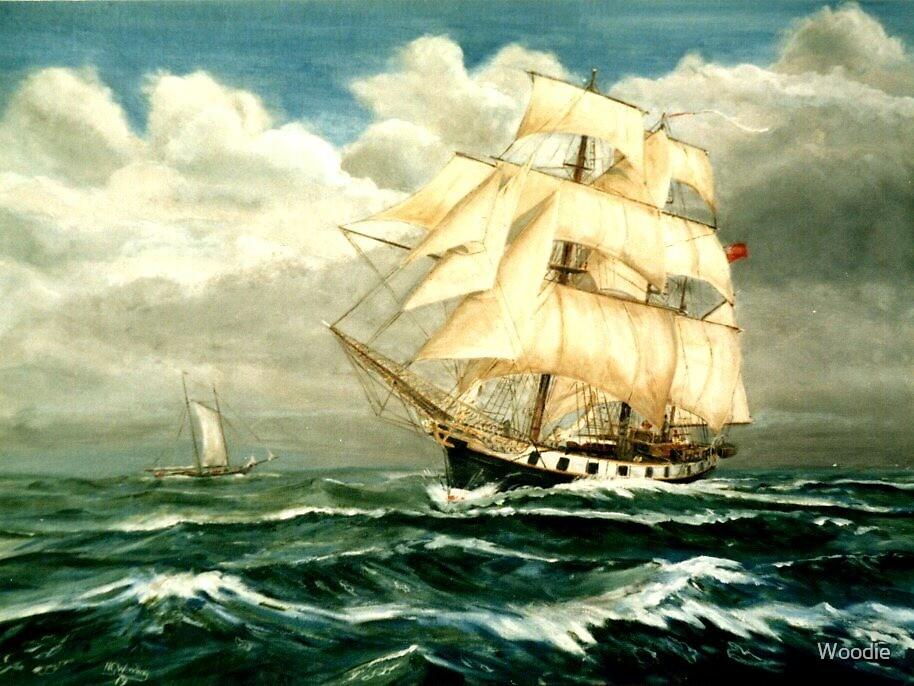 "Charles Darwin's Ship ""HMS Beagle"" by Woodie"