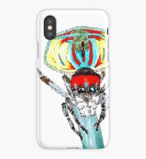 Peacock spider Maratus volans iPhone Case