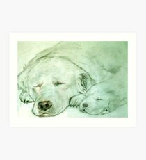 Let Sleeping Dogs Lye Art Print