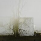 « un matin de brouillard » by linda vachon