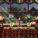 Christmas window by Annika Strömgren