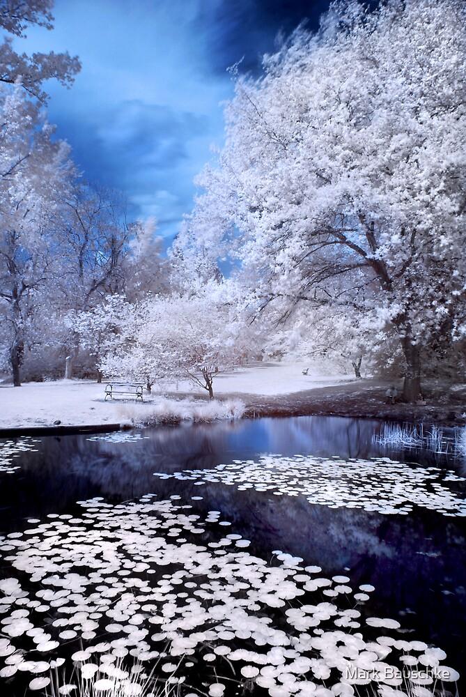Arboretum Pond by Mark Bauschke