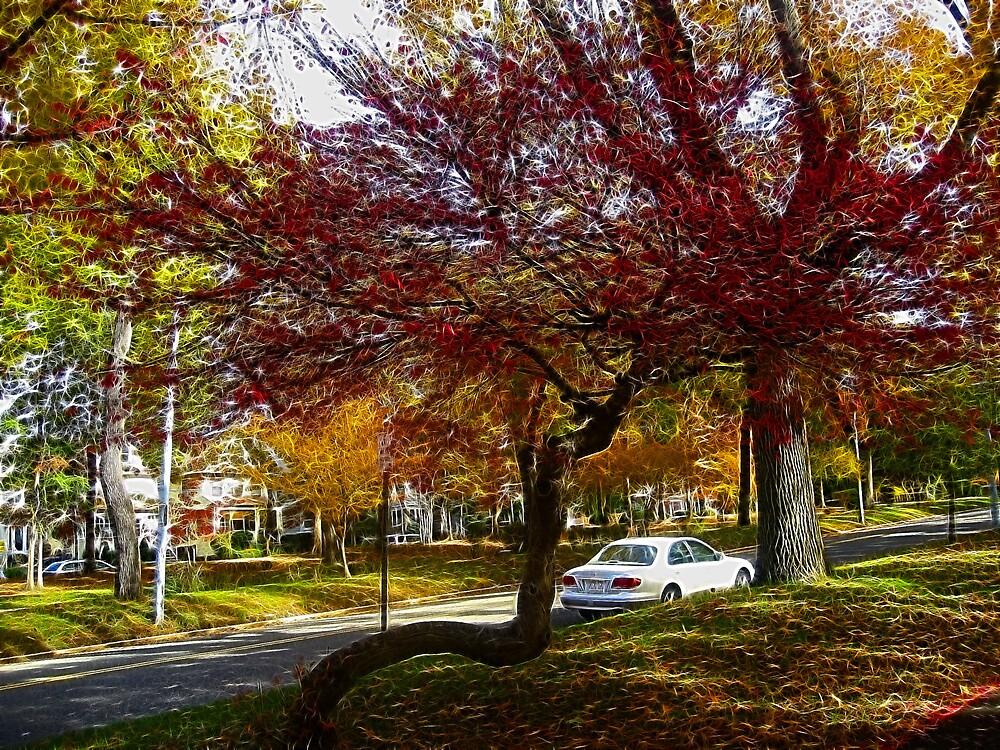 Fall Beauty by MACLOVER