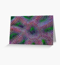 Favites coral Greeting Card
