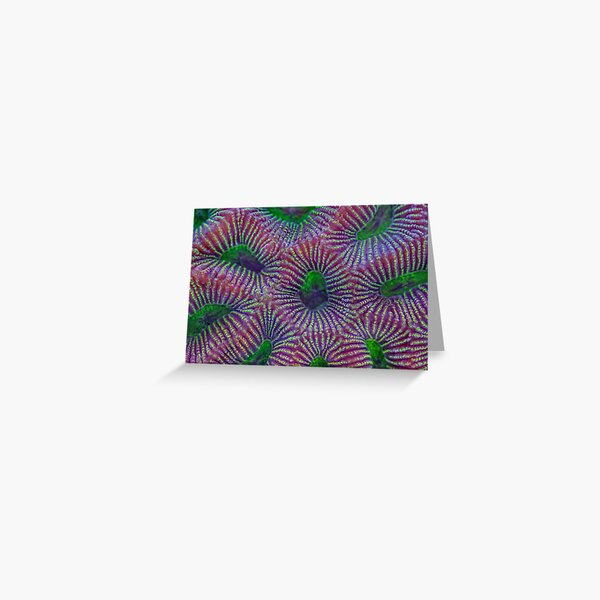 Favites coral Greeting Card