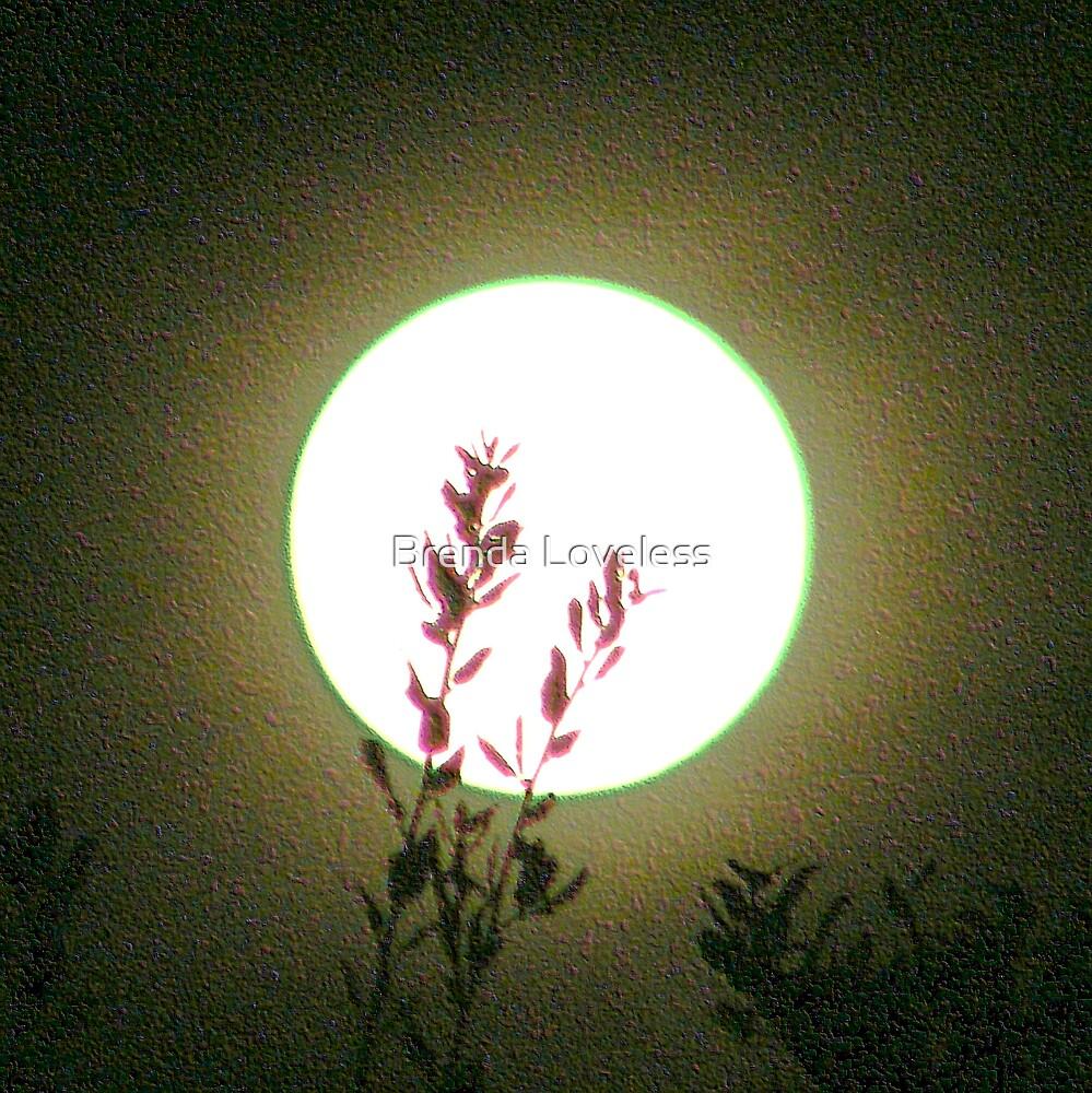 oaken moon by Brenda Loveless