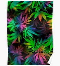 WEED COLORS Poster