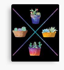 Succulent Cactus Potted Plants Minimalist X Design Canvas Print