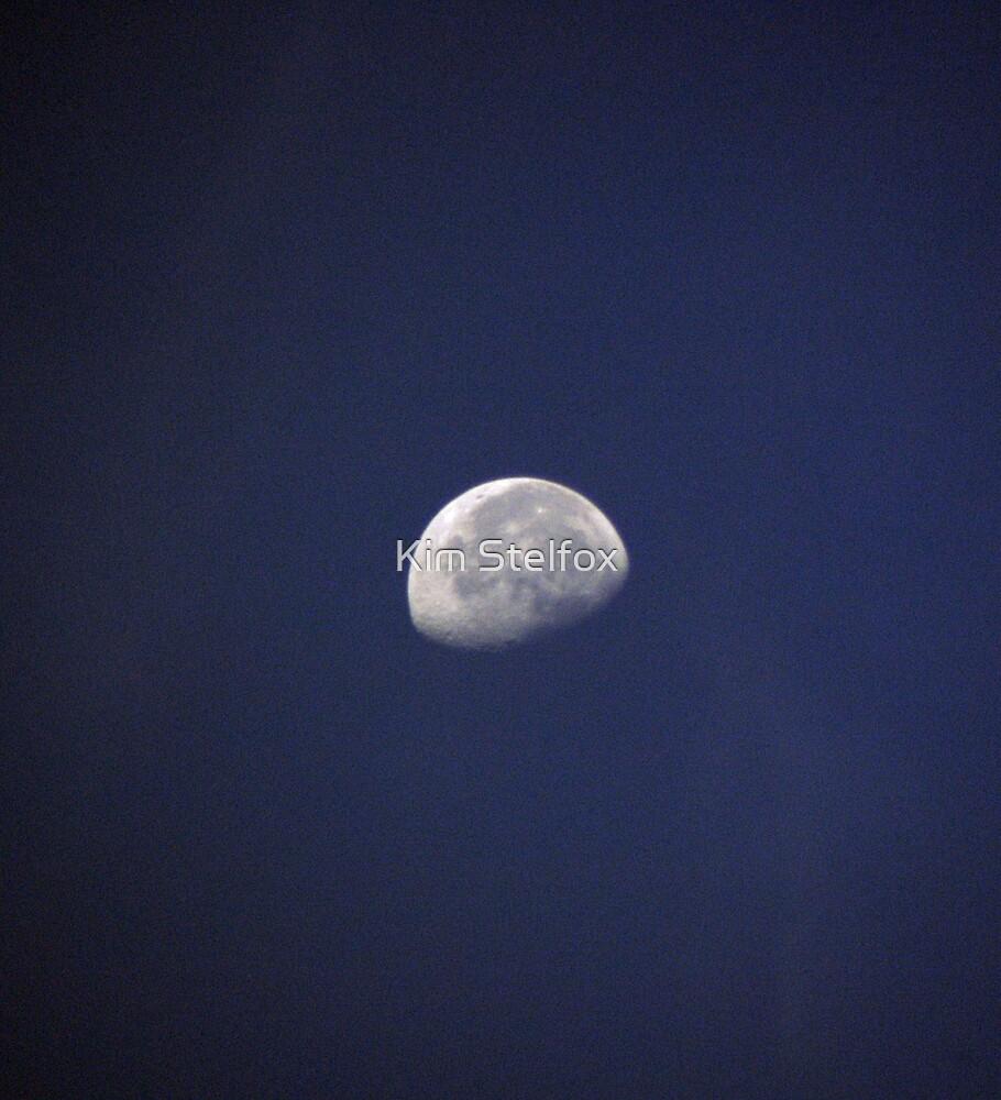 lunar by Kim Stelfox