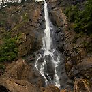 The Base of Ellensborough Falls by Mark Snelson