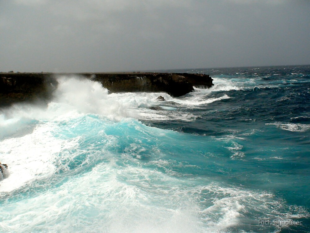 Washinton Slaagbai National Park, Bonaire by Rich Synowiec