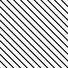 LINES by Thomas Barker-Detwiler