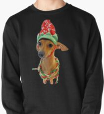 Chaweenie holiday with model Temperance Pullover