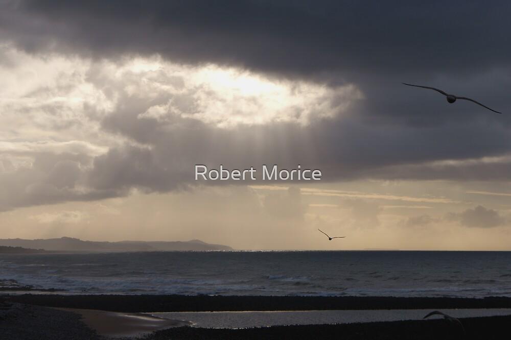 Lillico Beach - Tasmania by Robert Morice