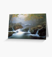 TOUCHING CALM* Greeting Card