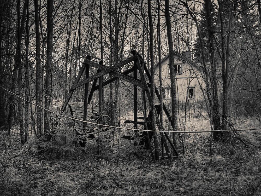 'Dying memories, november II' by Petri Volanen