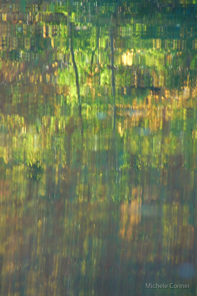 Northwest River Park Reflection by Michele Conner