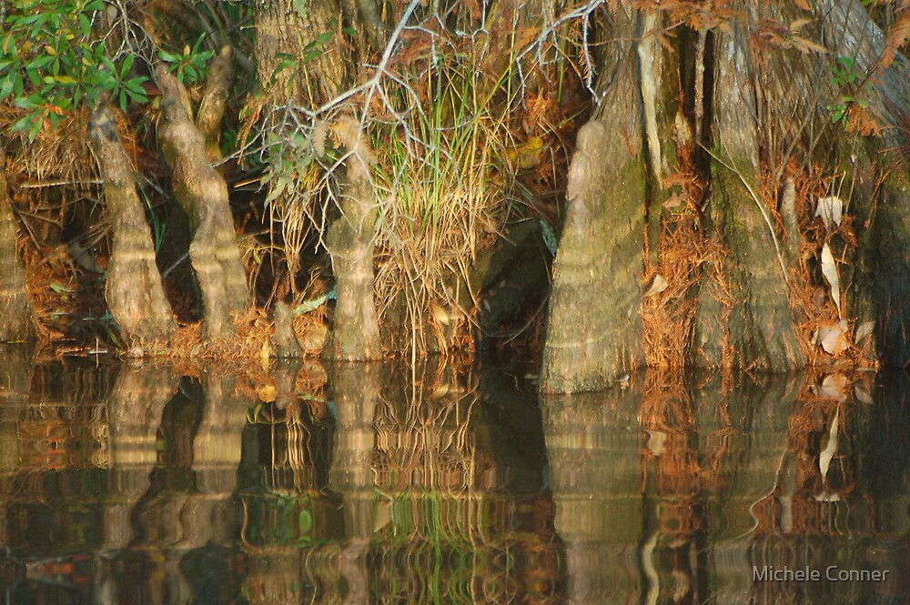 Northwest River Park Trees by Michele Conner