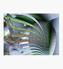 Intuition Photographic Print