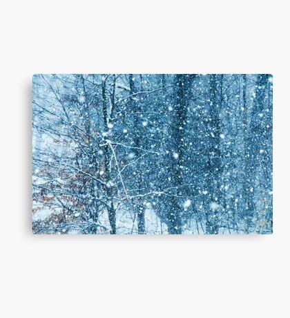 Snow Falling II Canvas Print