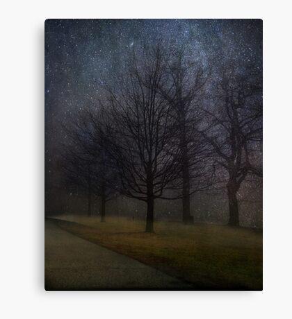 Night Study Canvas Print