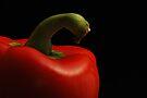 Peppy Pepper by Vikram Franklin
