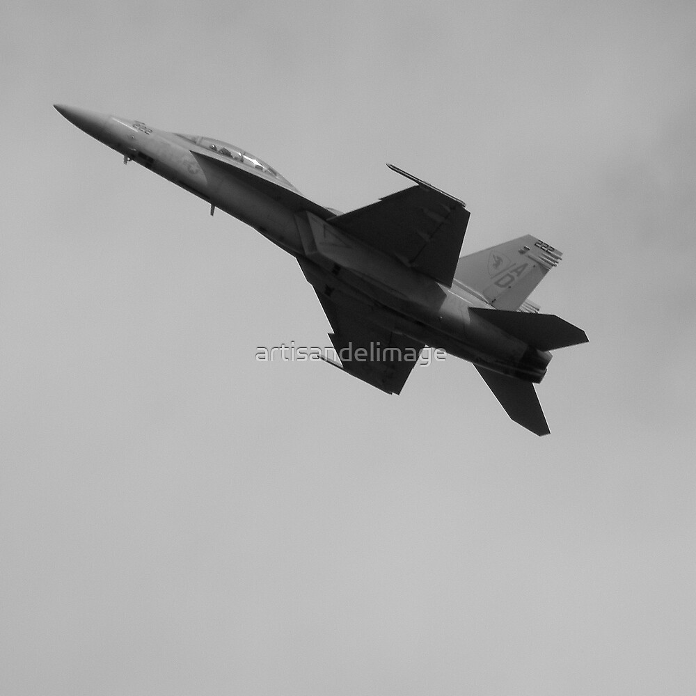 Kennedy Space Center 2008 Air Show ~ Part Two by artisandelimage