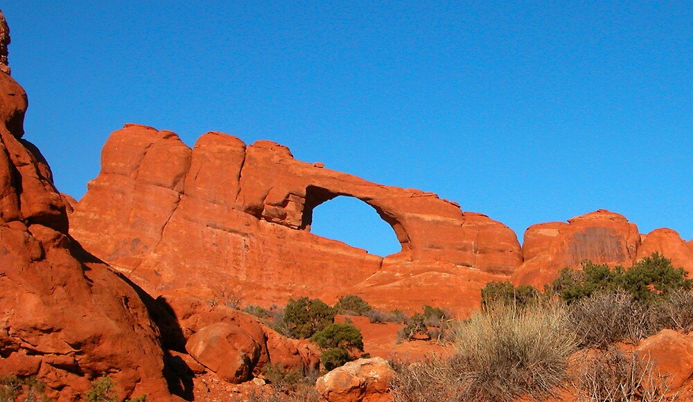 Arches National Park 2 by Virginia Maguire