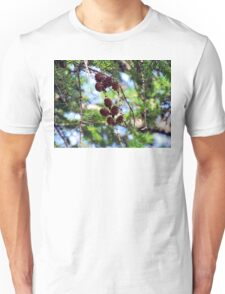 Pinecones 2 T-Shirt