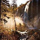 Waterfall in Morning Mist by Daniel H Chui