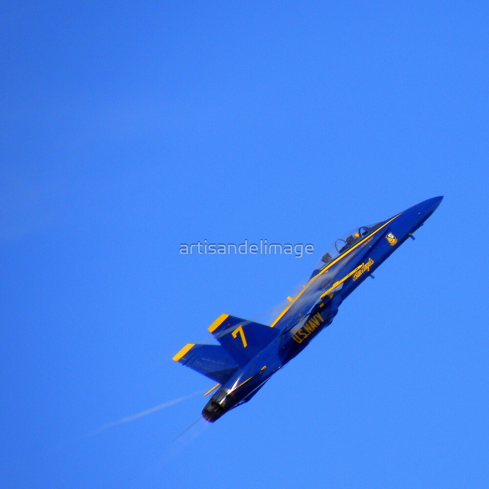 Kennedy Space Center 2008 Air Show ~ Part Fourteen by artisandelimage
