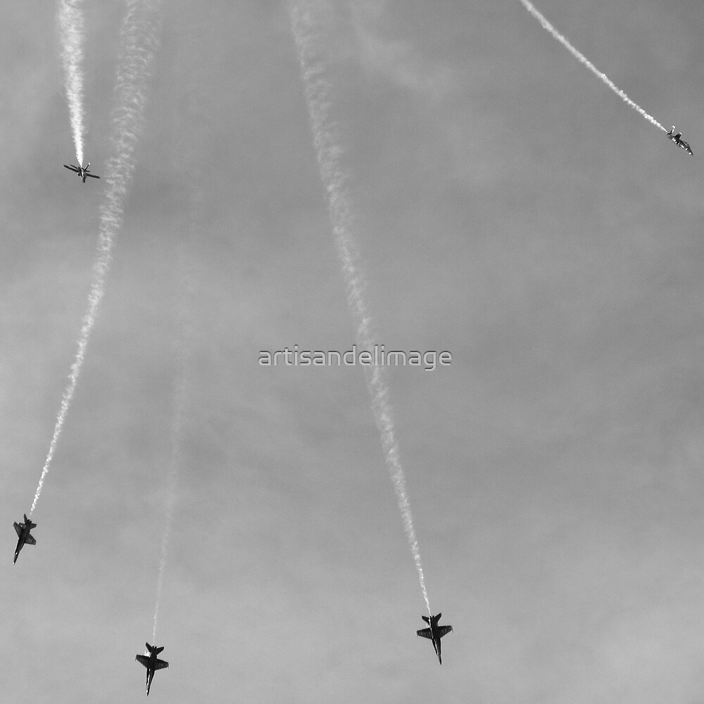 Kennedy Space Center 2008 Air Show ~ Part Sixteen by artisandelimage