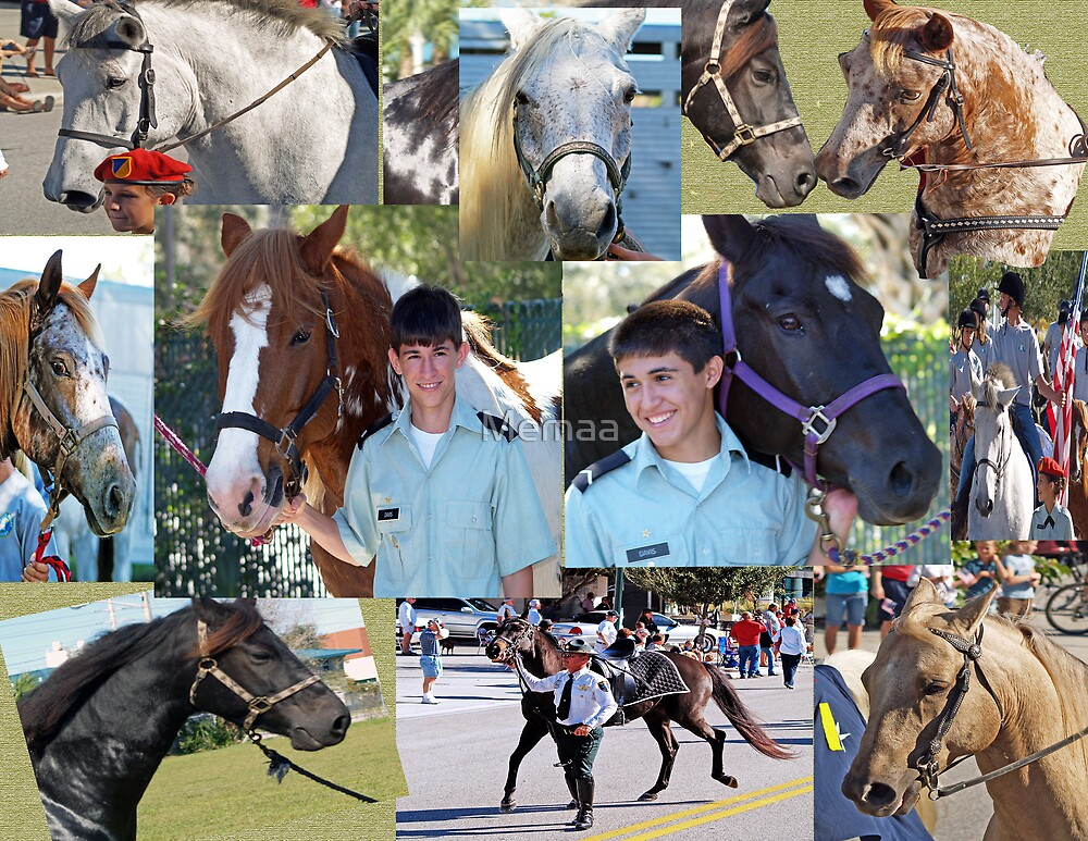 Grandsons SMA Equestrian Collage by Memaa