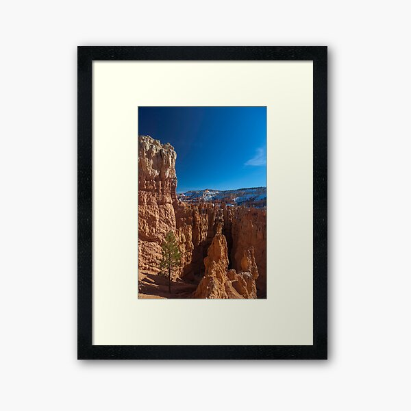 Bryce Canyon from the Navajo Trail Framed Art Print