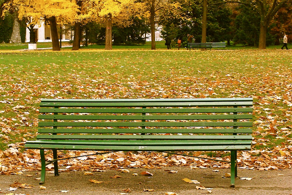 bench in the autumn.... by anisja