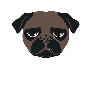 Puglife by lucredesign
