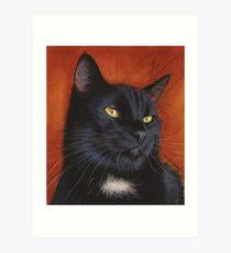 black cat kitten  Art Print