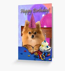 Birthday Pomeranian Greeting Card