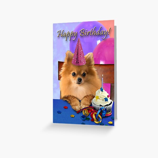 Birthday Pomeranian Greeting Card