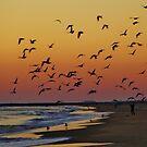 winter sunrise at the beach by ANNABEL   S. ALENTON