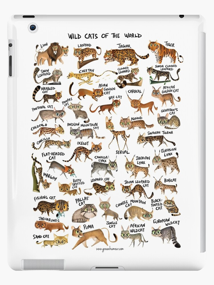 Quot Wild Cats Of The World Quot Ipad Cases Amp Skins By Rohanchak
