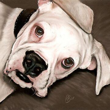 white Boxer by art-of-dreams