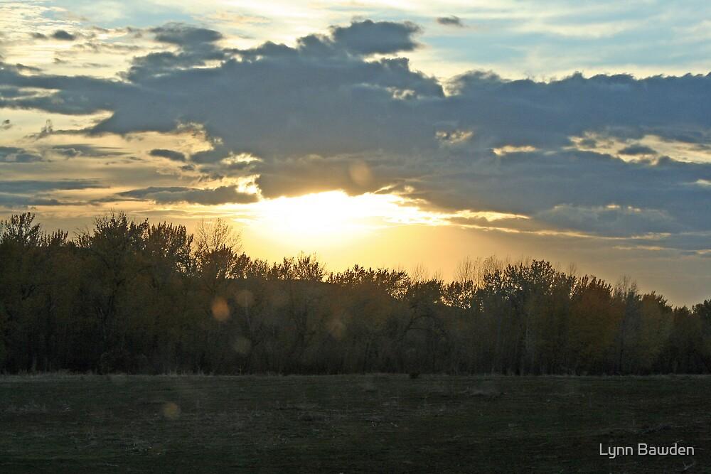 """""""Idaho Sunset"""" by Lynn Bawden"""