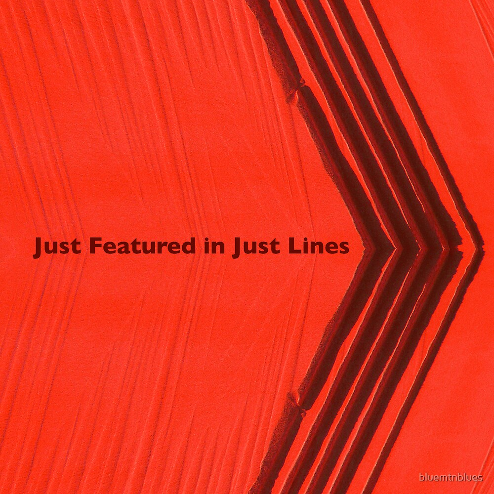 Just Featured in Just Lines by bluemtnblues