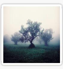 Trees in the mist Sticker