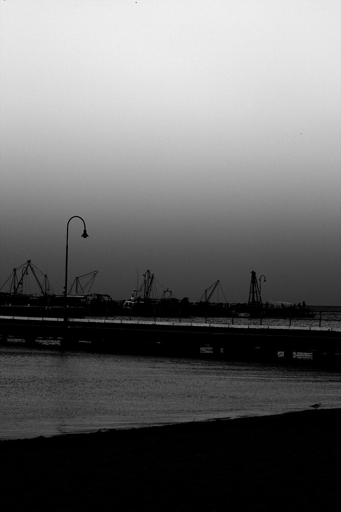 Port Arlington Beach by Maggie McNay