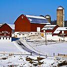 Farm by BigD